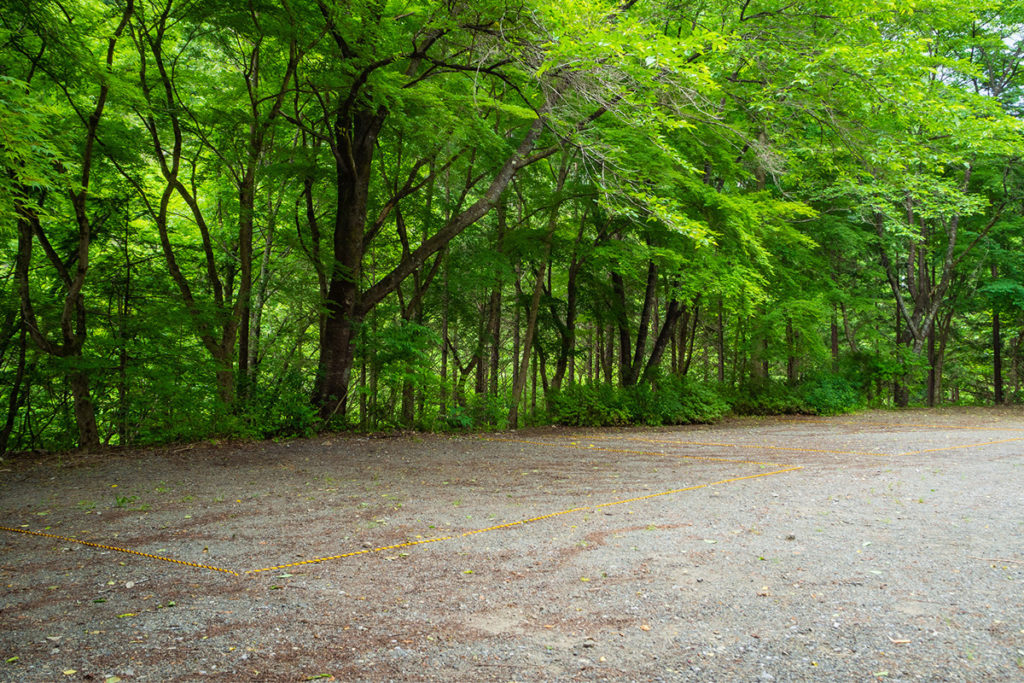 森のテントサイト2区画