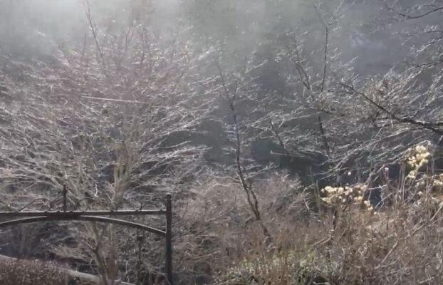 小菅村は強い風
